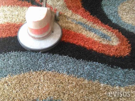 Empresa de limpieza de alfombras en republica dominicana – servicios 809-273-7599