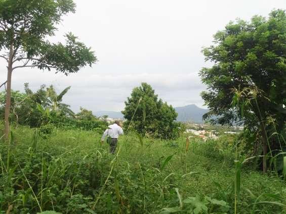 Terreno en los cerros de gurabo stgo.