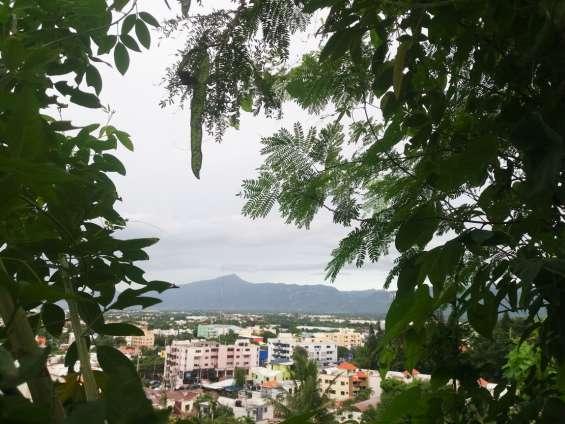Fotos de Terreno  en venta en los cerros  de gurabo  lll 3